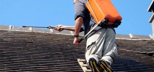 entreprise demoussage entretien toitures
