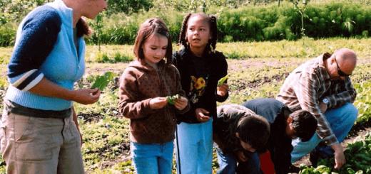 creer ferme pedagogique